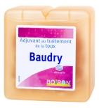 Baudry - adjuvant au traitement de la toux - 70 g
