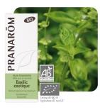 Huile Essentielle Basilic exotique - 10 ml