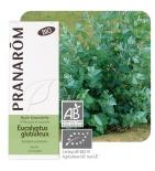 Huile Essentielle Eucalyptus Globulus BIO -  10 ml