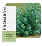 Huile Essentielle Eucalyptus globuleux - 10 ml