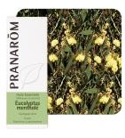 Huile Essentielle Eucalyptus Mentholé - 10 ml