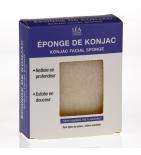REhydrate - Eponge de Konjac - 50 g