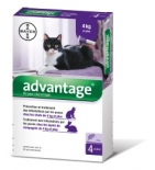 ADVANTAGE 80 - Antiparasitaire Chat et Lapin +4 kg - 4 pipettes
