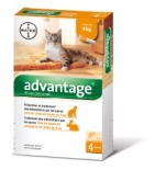 ADVANTAGE 40 - Antiparasitaire Chat et Lapin -4 kg - 4 pipettes