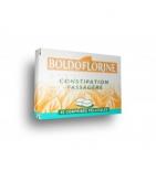 Boldoflorine - boîte de 40 comprimés
