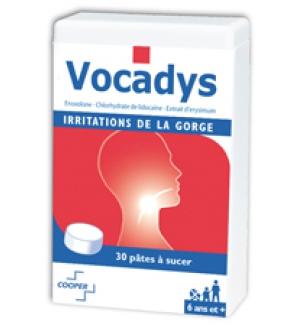 Vocadys 'irritations buccales' - Boîte de 30 pâtes