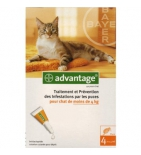 ADVANTAGE 40 - Anti-puces pour chat et lapin de moins de 4 kg - Boite de 4 pipettes